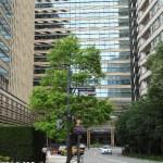 東京ミッドタウン 穴場駐車場