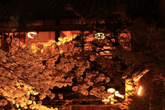 京都春のライトアップ