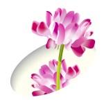 春の花 イラスト無料