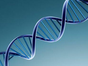 Modulação Bioidêntica Menopausa
