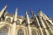 <h5>The basilica</h5><p></p>