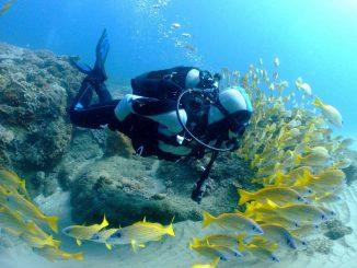 corsi sub a parma scuba & sail-jpeg