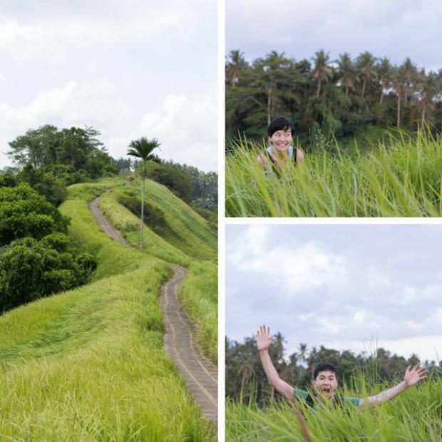 Campuhan ridge Ubud Bali