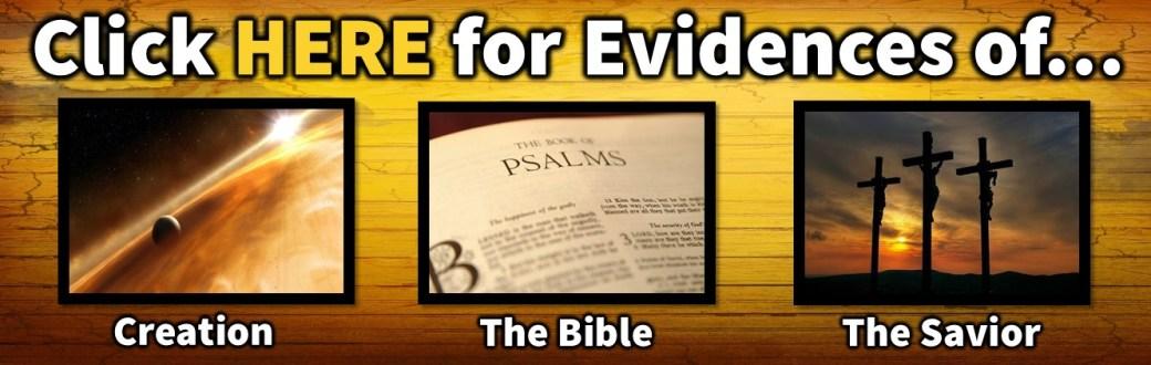 Evidences 2