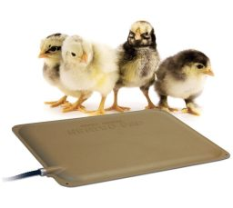 Heating Pad for Baby Chicks