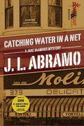 Catching Water in a Net by J.L. Abramo