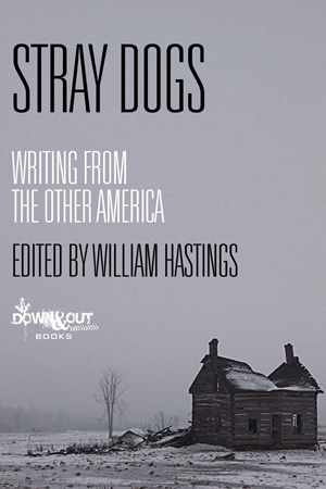 Stray Dogs: Writing from the Other America edited by William Hastings