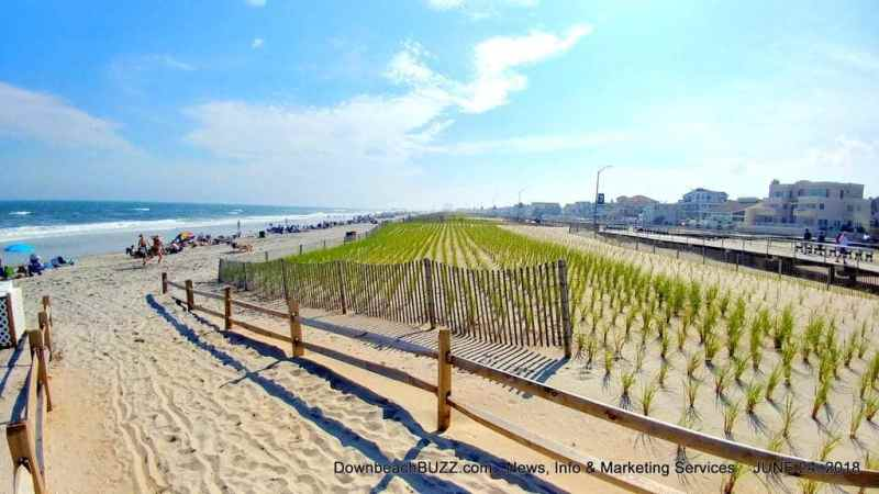 ew Dunes Cover Over 50% of Ventnor Beach