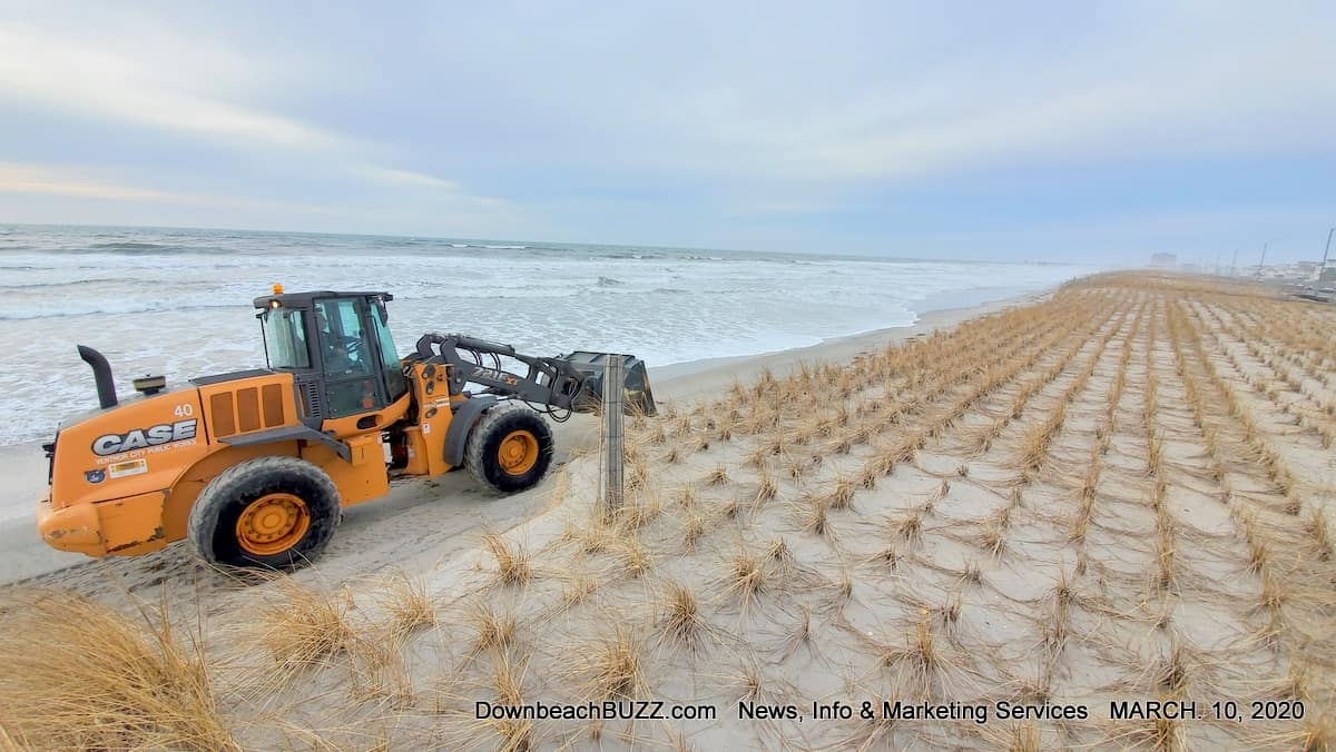 Ventnor Beach and Dune Erosion