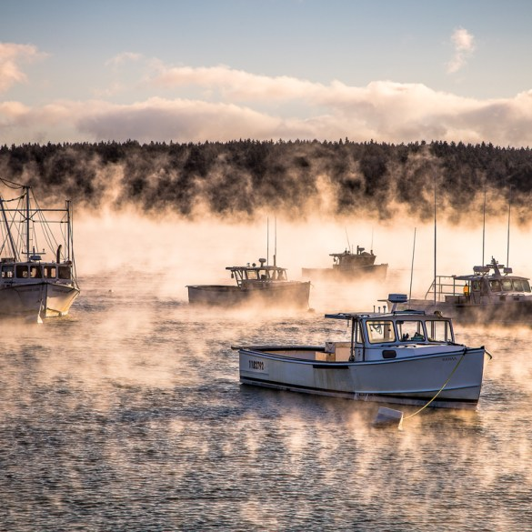 Sea Smoke, Owls Head Harbor, Maine