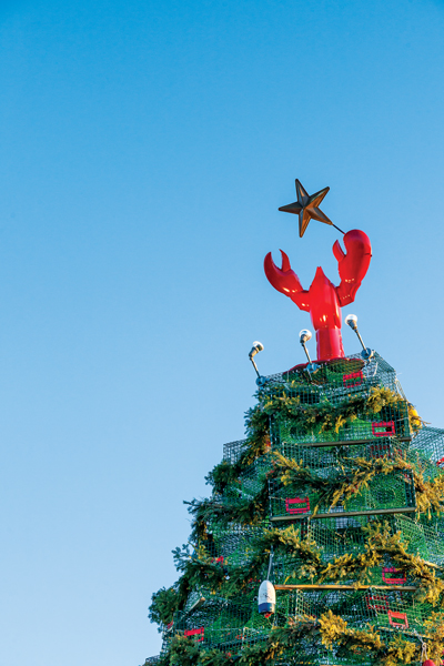 Rockland Maine Lobster Trap Tree