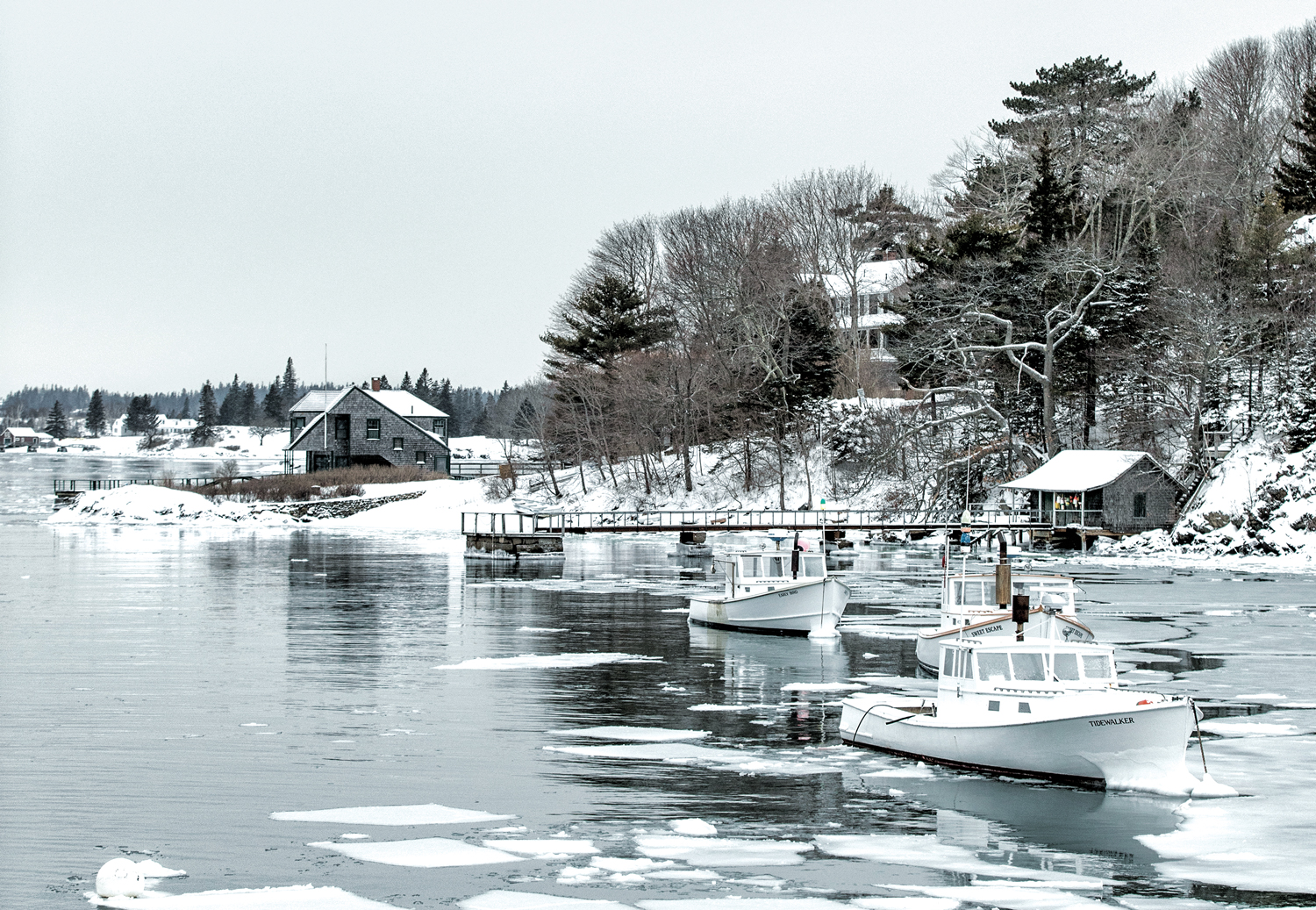 North Haven, Photographed by Greta Rybus