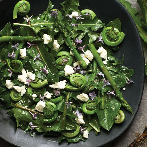 Douglas Merriam's sauteed fiddleheads recipe