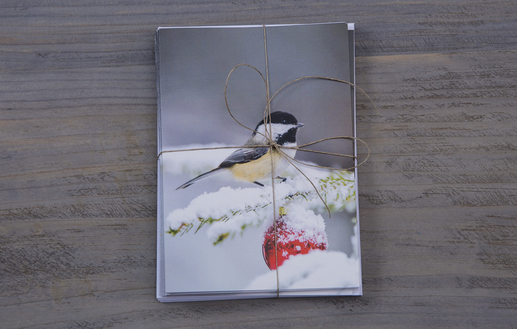 Maine gift cards, Chickadee Holiday Cards