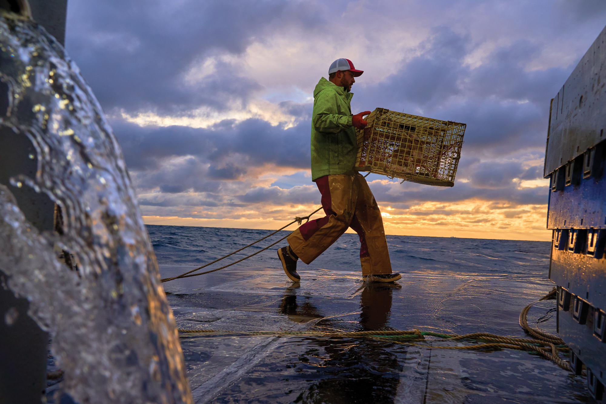 Carrying a baited lobster trap