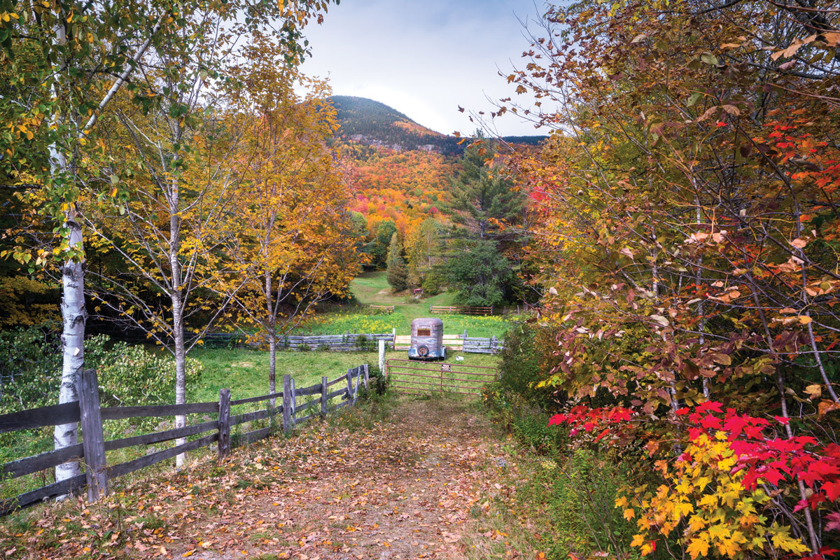Western Maine Fall Foliage
