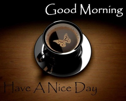 Good Morning Have A Nice Day The Best Greeting Card For You