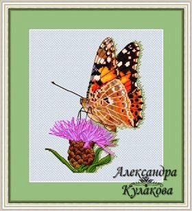 Cross-Stitch pattern FREE download as pdf file with butterfly