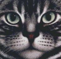 Cross stitch pattern with FREE download instantly in PDF file, to embroider a cat face