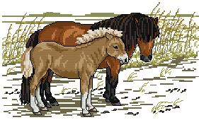 Cross stitch pattern with FREE download instantly in PDF file, to embroider horses