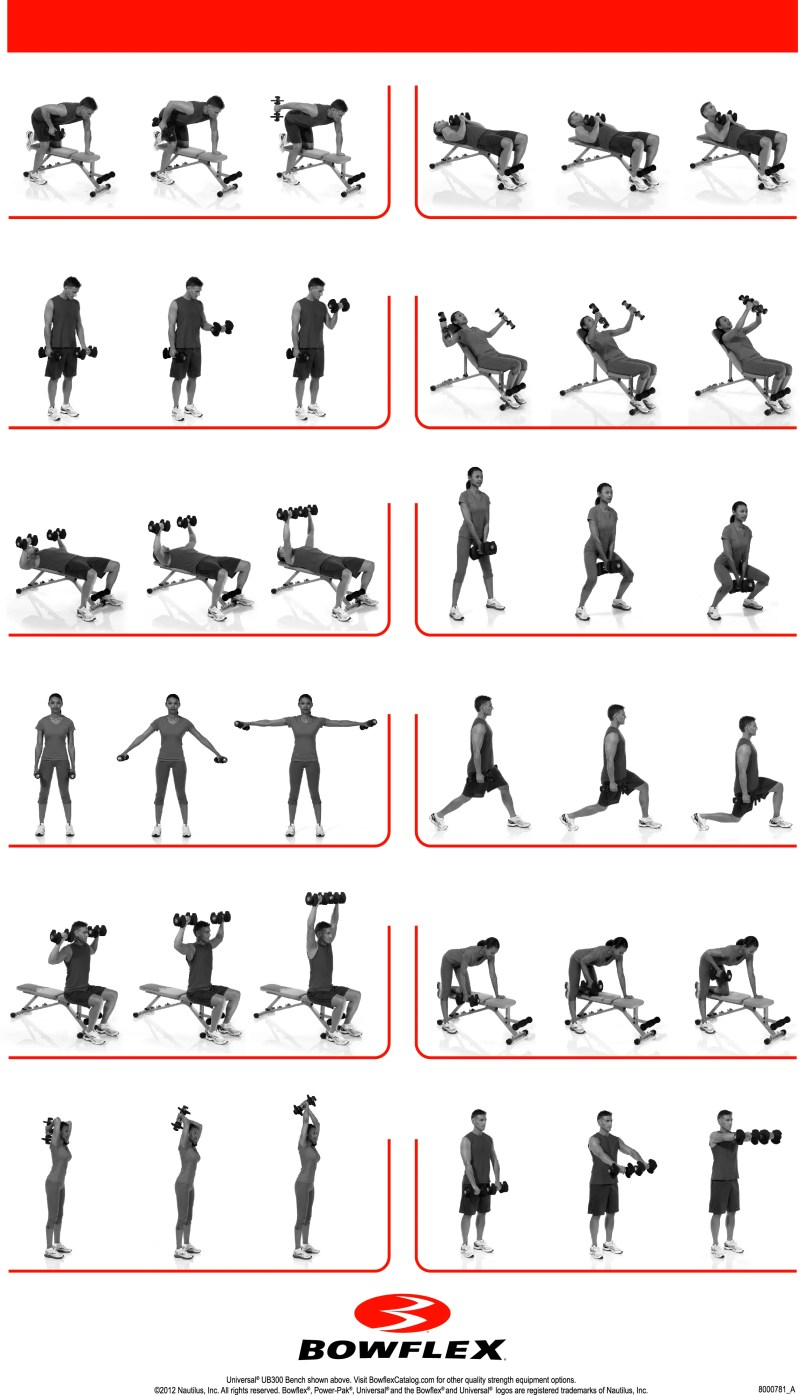 Bowflex Pr1000 Workout Routine Pdf | Workout