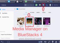 Media Manager on BlueStacks 4