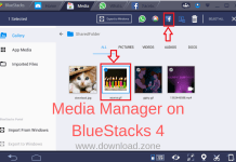 Media Manager on BlueStacks 4