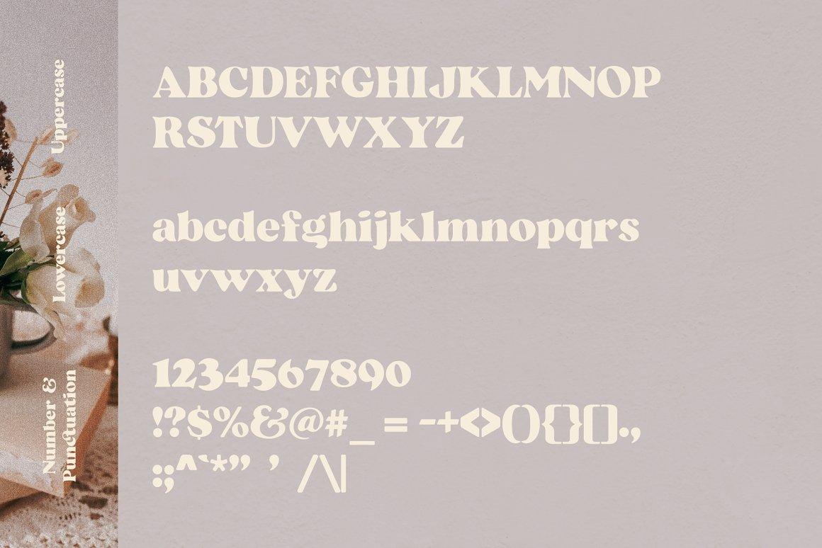 Beatrice-Font-3