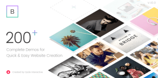 Bridge v10.1.2 - Creative Multi-Purpose WordPress Theme