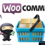 Download WooCommerce Plugins Collection Updated 28-04-2017