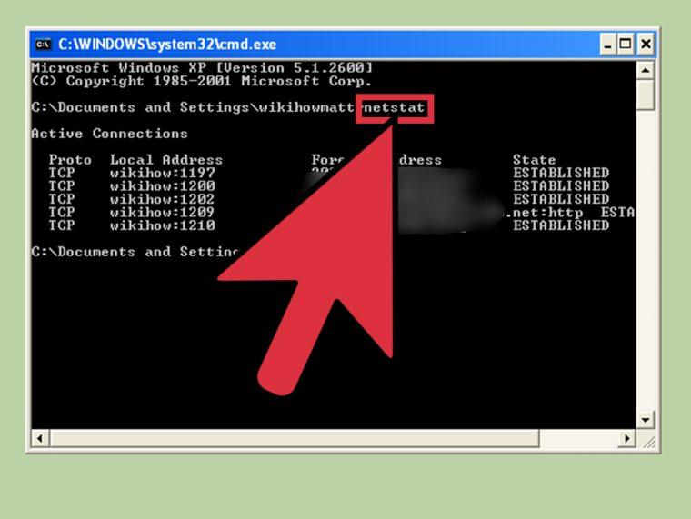Best CMD Commands for Network Management in Windows