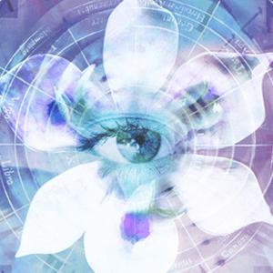 Blue Iris 5.4.6.3 x64 Free Download