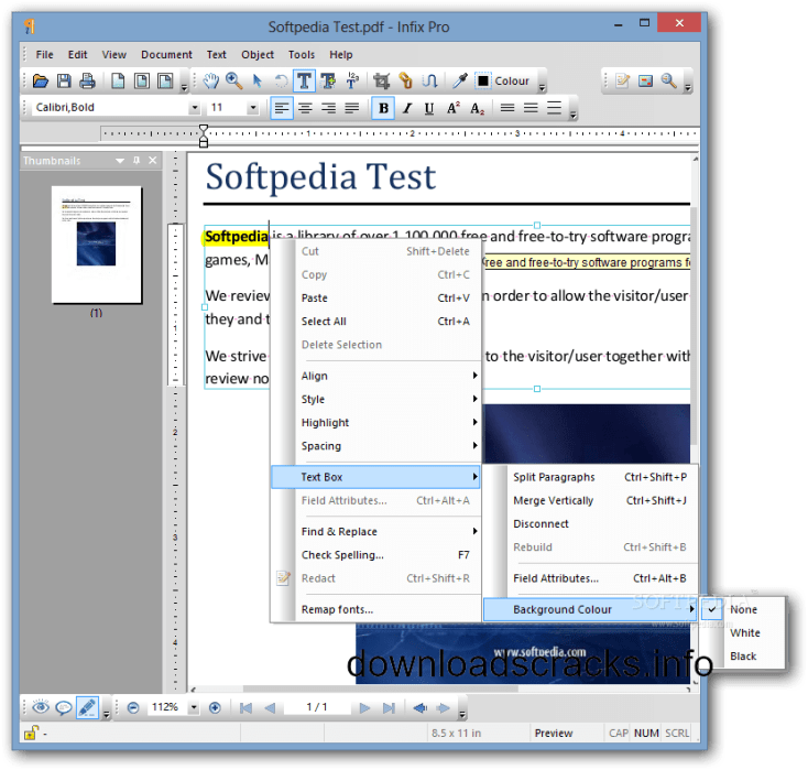 Infix PDF Working 100% Portable Plus With File Free