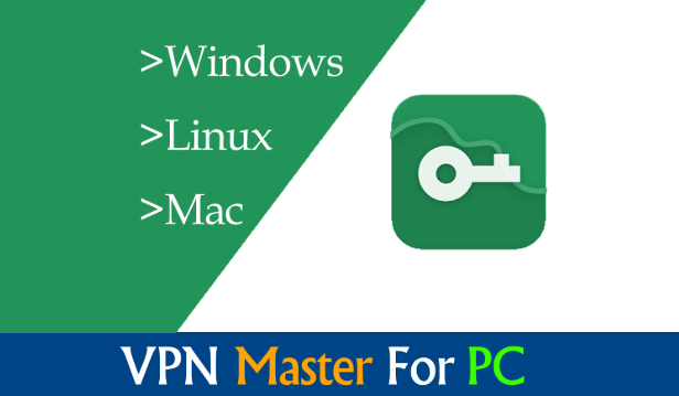 download VPN master for chrome