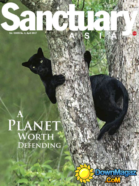 Sanctuary Asia - 04.2017 » Download PDF magazines ...