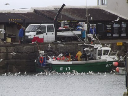 Bringing in the catch at Lyme Regis- (Martin is in blue on the quayside)