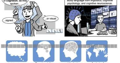Neil Cohn: The Visual Language of Comics 02