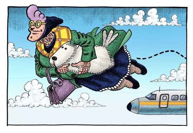Psycho Gran - Flying
