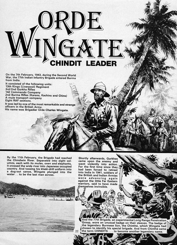 True War 2 Chindit DTT