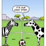 Football Earth - The Wild Side - Zebras