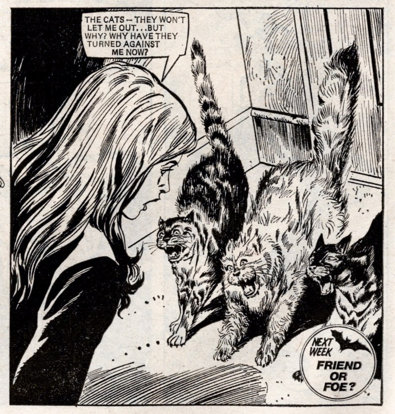 """A panel from the Misty strip """"The Cats of Carey Street"""". Art by Mario Capaldi"""