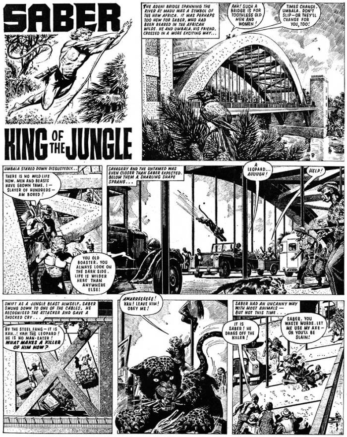 Saber: King of the Jungle, by Denis McLoughlin from Tiger and Hurricane cover dated 6th April 1968.