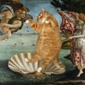 The Birth of Venus by Sandro Botticelli: (with Cat). Image via Fat Cat Art