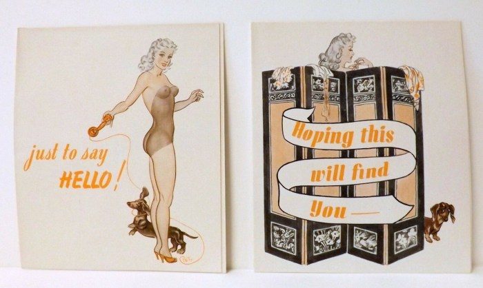 """Daily Mirror """"Jane"""" Greeting Cards by Norman Pett"""