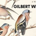 Gilbert White - 1720 to 2020 - Celebrating 300 Years - Writing Competition