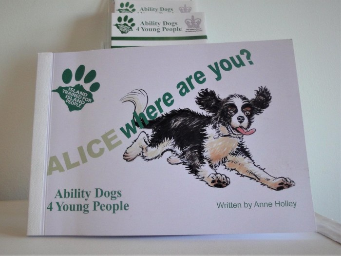 Alice Where Are You? By Anne Holley, illustrated by Barrie Mitchell