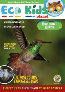 Eco Kids Planet Magazine - August 2020