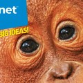 Animal Planet magazine (2021) SNIP