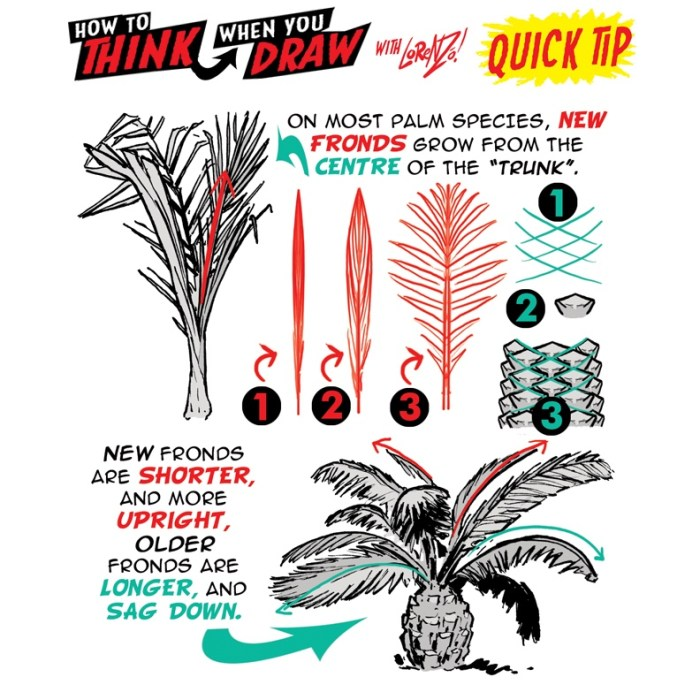 How to Think When you draw Palm trees by Lornezo Etherington