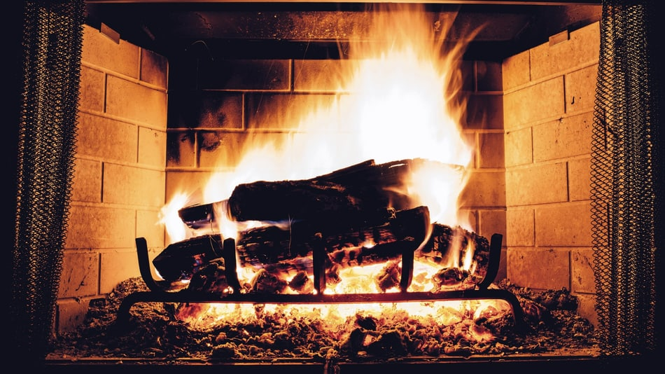 11 Kinds Of Wood That Should Not Be Burned In A Fireplace Bonus